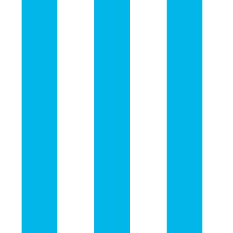 Righe Bianche Azzurre
